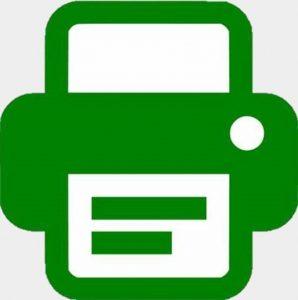 Microsoft Excel Essentials PDF